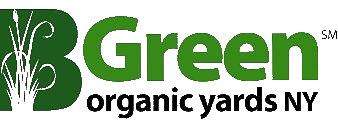 Logo of BGreen Organic Yards, NY